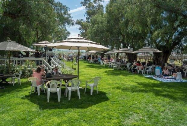 19 Fun Filled Sf Bay Area Events For Father S Day 2019