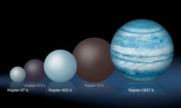 Comparison of the relative sizes of several Kepler circumbinary planets. (Lynette Cook)