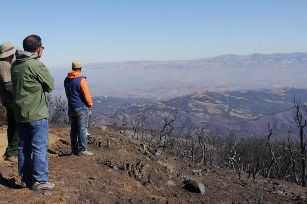 Officials from water, fire and open space agencies on Wednesday toured the damage from the Loma Fire, near Mount Chual in southern Santa Clara County. (Patty Eaton / Santa Clara Valley Open Space Authority)