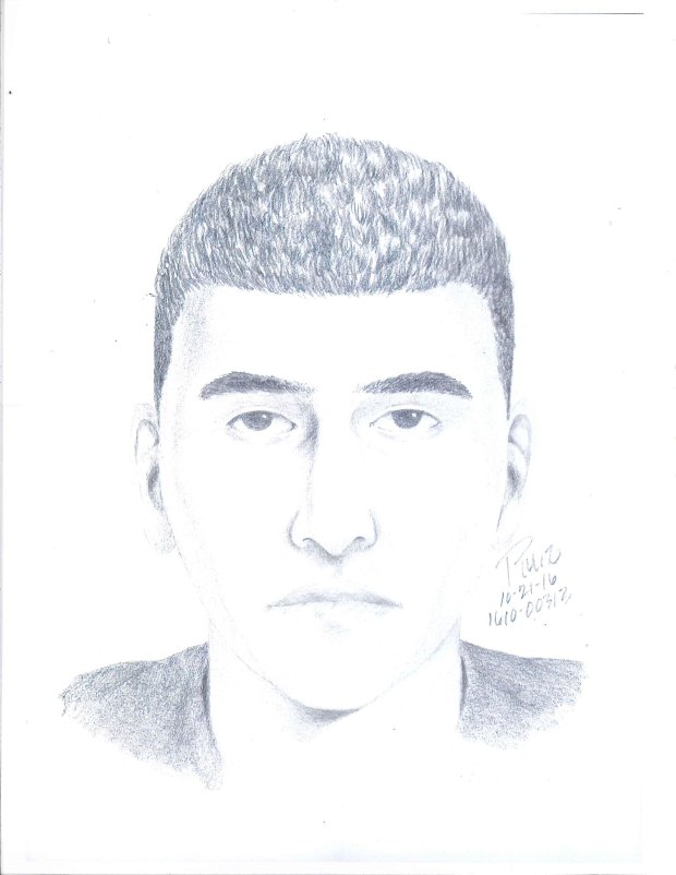 Foothill-De Anza Community College District Police Department released this sketch of a man suspected of posing as an undercover officer and trying to lure a student into his car at DeAnza Community College on Wednesday. (Foothill-De Anza Community College District Police Department)