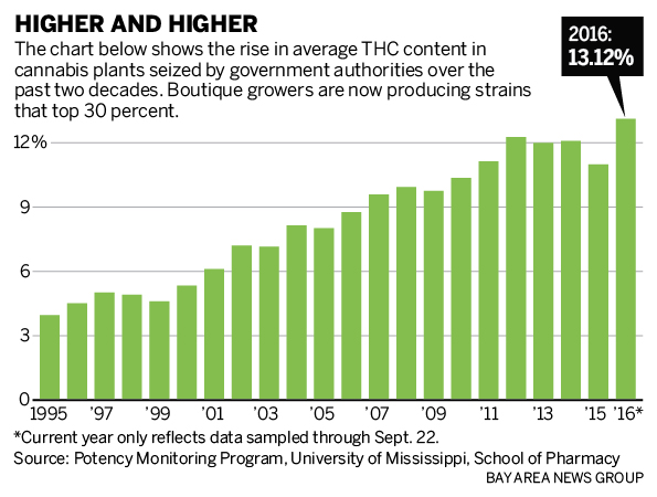weed potency chart: California cannabis gets thc boost