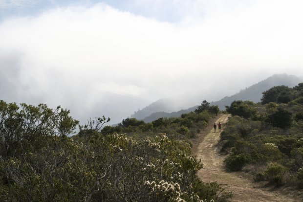 The Hidden Trail at Big Sur's Andrew Molera State Park isn't very hidden, but it is beautiful. (Photo: Alice Bourget)