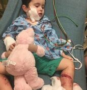 Samantha Bishop is being credited with saving the life of her 2-year-old son Grayson who was seriously injured after being attacked by two dogs.