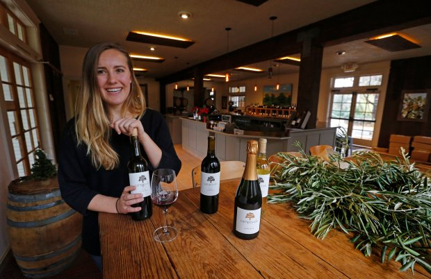 Aimee Johnson, experience creator for Campovida Winery, pours a taste of their 2014 Zinfandel in the Tasting Room at the Winery in Hopland, Calif., on Wednesday, Dec. 14, 2016. (Laura A. Oda/Bay Area News Group)