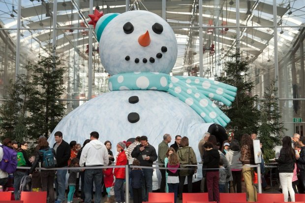 'Tis the Season for Science at the California Academy of Sciences where it's a winter wonderland complete with snow flurries, caroling, festive programs and a visiting pair of reindeer, through Jan. 8.