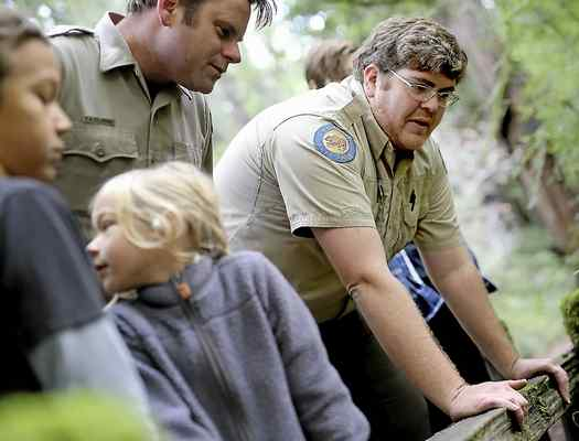 Park docent Daniel Holsapple, right, searches for mushrooms at Big Basin State Park on Sunday where he guided visitors on a mushroom walk. (Kevin Johnson -- Santa Cruz Sentinel)