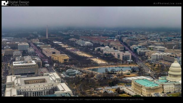 aerial image of DC march