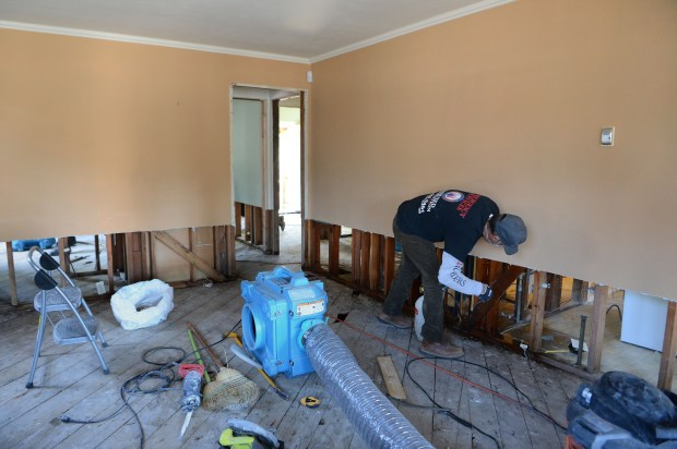 A worker with Reassured Restoration sprays a second coat of an anti-microbial and bleach mixture to exposed wood framing in a flood damaged home on 19th Street in San Jose, Calif., on Thursday, March 2, 2017. Many of the flood damaged homes run the risk of developing mold issues if they are not properly dried, cleaned and treated against mold and other bacteria. (Dan Honda/Bay Area News Group)