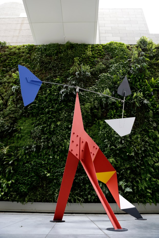 """The """"living wall"""", a plant installation on the third-floor terrace at SFMOMA in San Francisco, Calif., on Thursday, April 27, 2017. (Josie Lepe/Bay Area News Group)"""