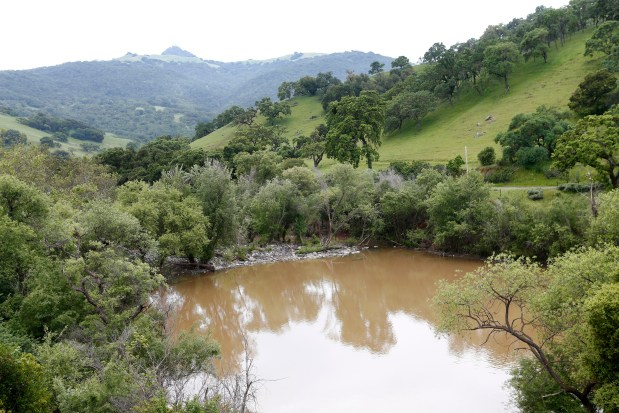The North Fork Pacheco Creek sits near the site of a planned $800 million reservoir in the hills of Eastern Santa Clara County near Hollister, Calif., on Tuesday, April 11, 2017. The reservoir would hold 130,000 acre-feet of water, making it the largest reservoir in Santa Clara County. (Gary Reyes/ Bay Area News Group)