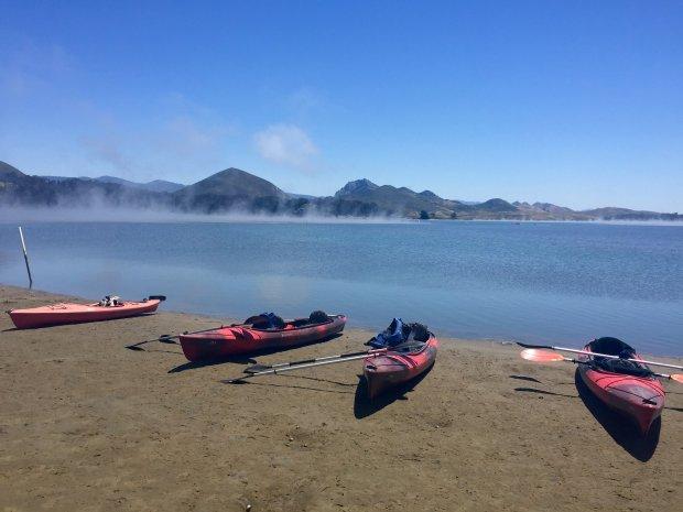 Hop on a kayak for a whirl through Morro Bay estuary. (Karen D'Souza)