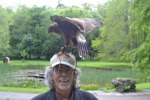 IRELAND: Walnut Creek residents Miriam Schaffer and Jeff Idelson visitedIreland recently on a trip that included a falconry lesson at Dromoland Castle in Newmarket. (Jeff Idelson photo)
