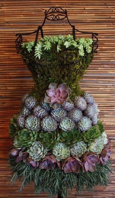 A dress form holds succulents. (Courtesy Judi Townsend/Mannequin Madness)