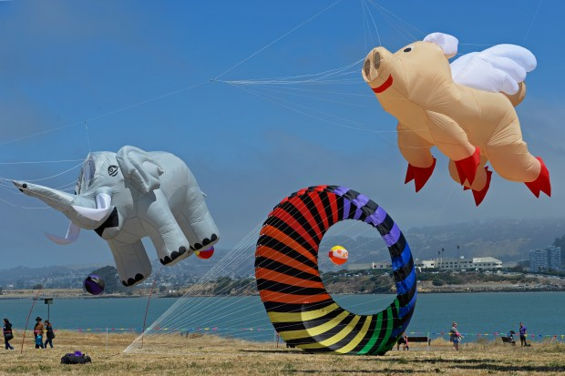 Large kites fly high in the sky during the 31st annual Berkeley Kite Festival & West Coast Kite Championships at Cesar E. Chavez Park at the Berkeley Marina in Berkeley Calif., on Saturday, July 29, 2017. (Jose Carlos Fajardo/Bay Area News Group)