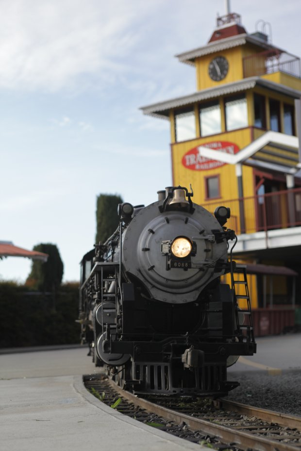 Train rides at Sonoma TrainTown Railroad whisk families off to theamusement park's animal attractions. You might call it a choo-choo to the zoo. (Sonoma TrainTown Railroad).