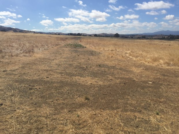 The 200-acre site in Evergreen where Ponderosa Homes would like to buildsenior housing. Photo: Scott Herhold