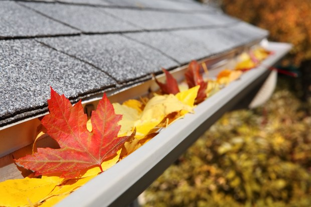 Clear debris and check for damage to the gutters and downspouts.