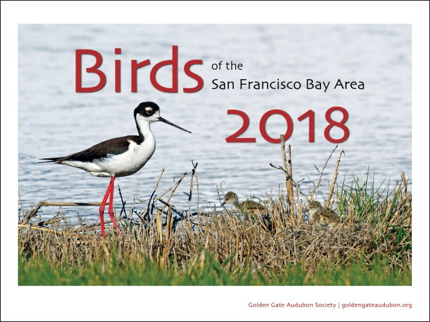 Golden Gate Audubon Society's annual bird calendar. (Courtesy of Golden Gate Audubon Society)