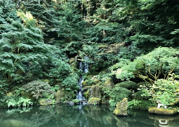 Lush foliage and waterfalls add to the serenity of the Portland JapaneseGarden in Washington Park. (Jackie Burrell/Bay Area News Group)