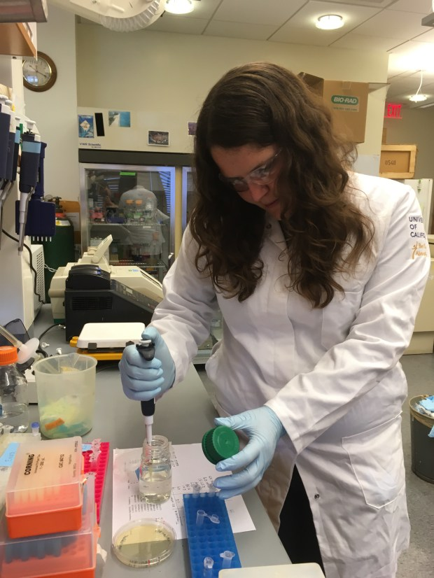 Emma Carroll, a UC Berkeley grad student, studies the folding of proteins in her lab. She's worried about having to pay a higher tax bill under the Republican tax plan. (Courtesy Emma Carroll)