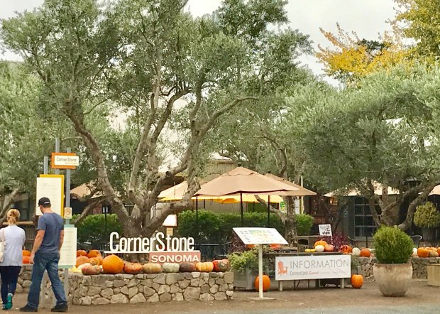 You could while away an entire afternoon at Cornerstone Sonoma, strollingthe Sunset test gardens, sampling wine at the tasting rooms and exploring the charming boutiques. (Jackie Burrell/Bay Area News Group)