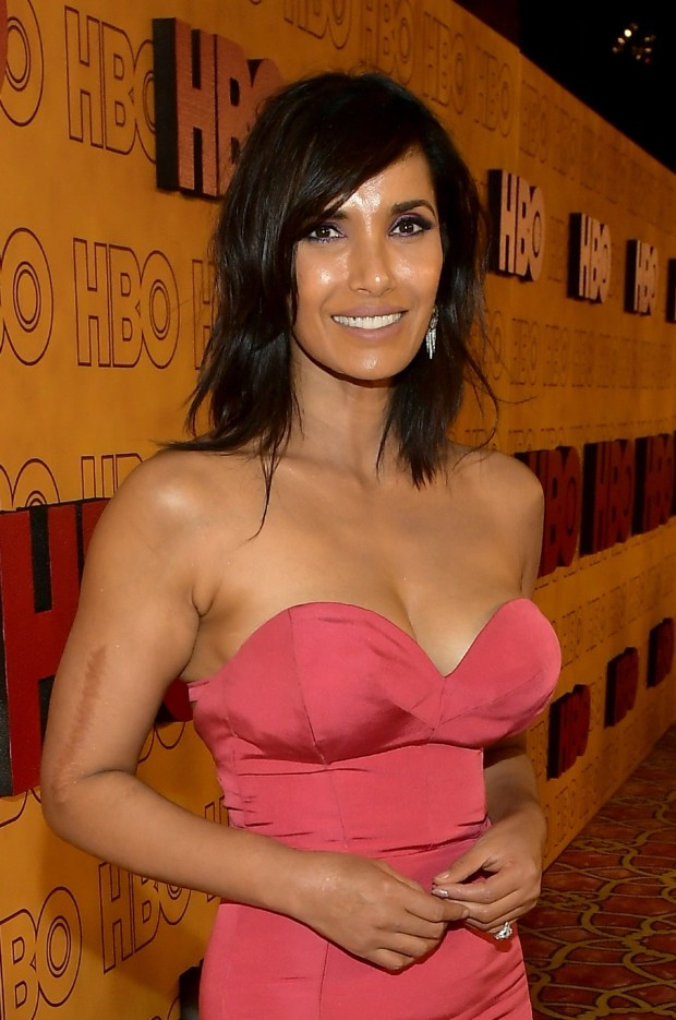 LOS ANGELES, CA - SEPTEMBER 17: Padma Lakshmi attends HBO's Post Emmy Awards Reception at The Plaza at the Pacific Design Center on September 17, 2017 in Los Angeles, California. (Photo by Matt Winkelmeyer/Getty Images)