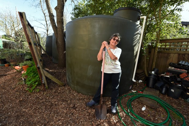 Judy Adler, of Walnut Creek, stands in her backyard next to her three 3,000-galloon water reservoir tanks at her home in Walnut Creek, Calif. on Friday, Feb. 2, 2018. Adler estimates that she is able to capture 30,000 gallons of rain water from the roof of her 2,800 square-foot house during an average of 18 inches of rain per year. (Jose Carlos Fajardo/Bay Area News Group)