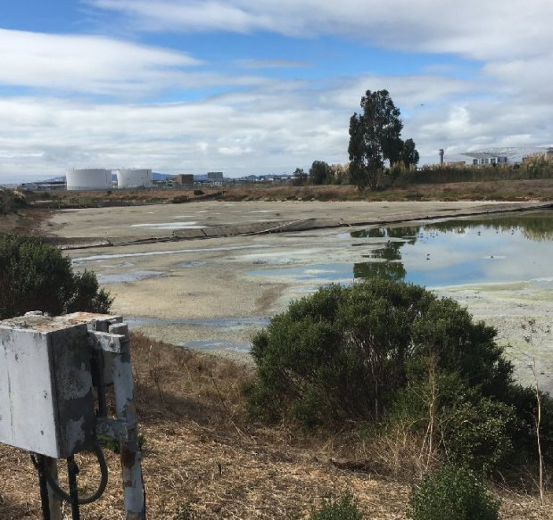 A wastewater pond off San Leandro is proposed to be restored to wetlandswith funding from Measure AA approved by voters in 2016. (San Francisco Bay Restoration Authority)