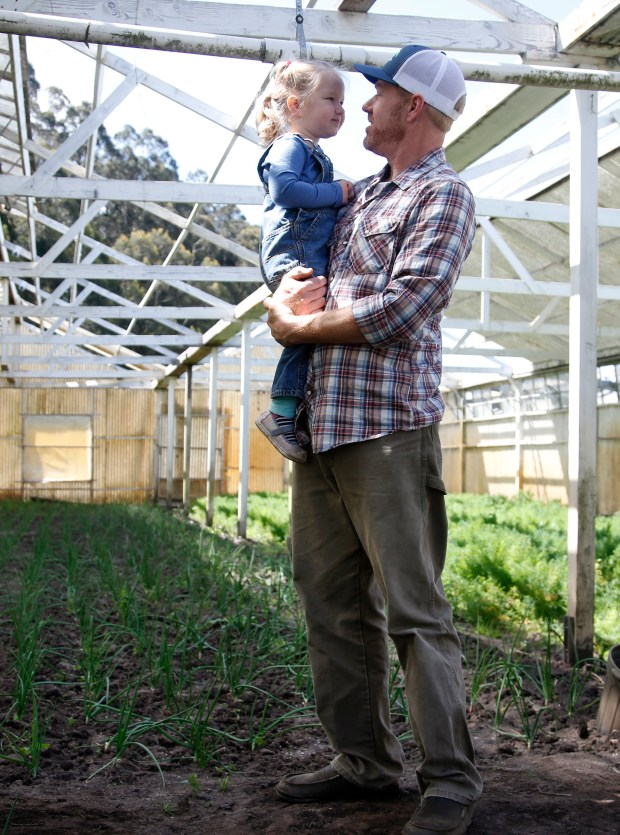 Eric Hollister holds his daughter Libby in a greenhouse at Daylight Farms in Half Moon Bay, Calif., Wednesday, May 16, 2018, where he hopes to start a commercial marijuana farm. (Karl Mondon/Bay Area News Group)
