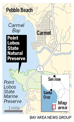 Point Lobos visits will soon require a reservation