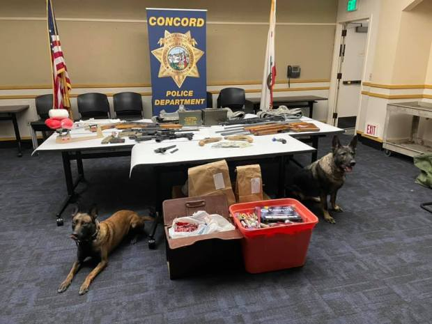 Dogs help Concord police make guns, drugs, fireworks haul