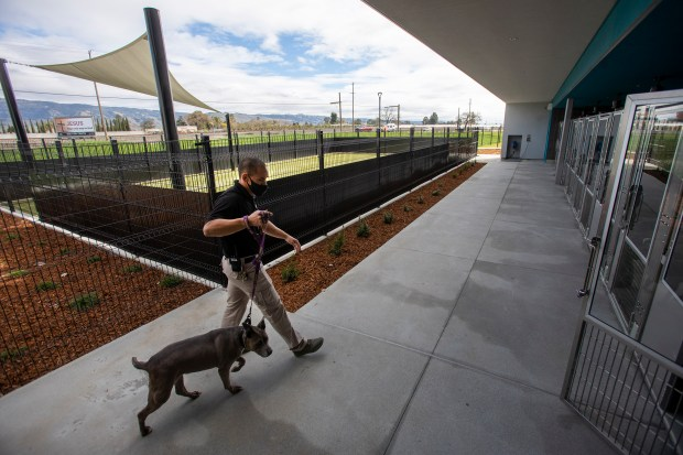 Photos: Santa Clara County opens new Animal Services Center in San Martin 5