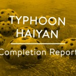tn-haiyan-completion-report