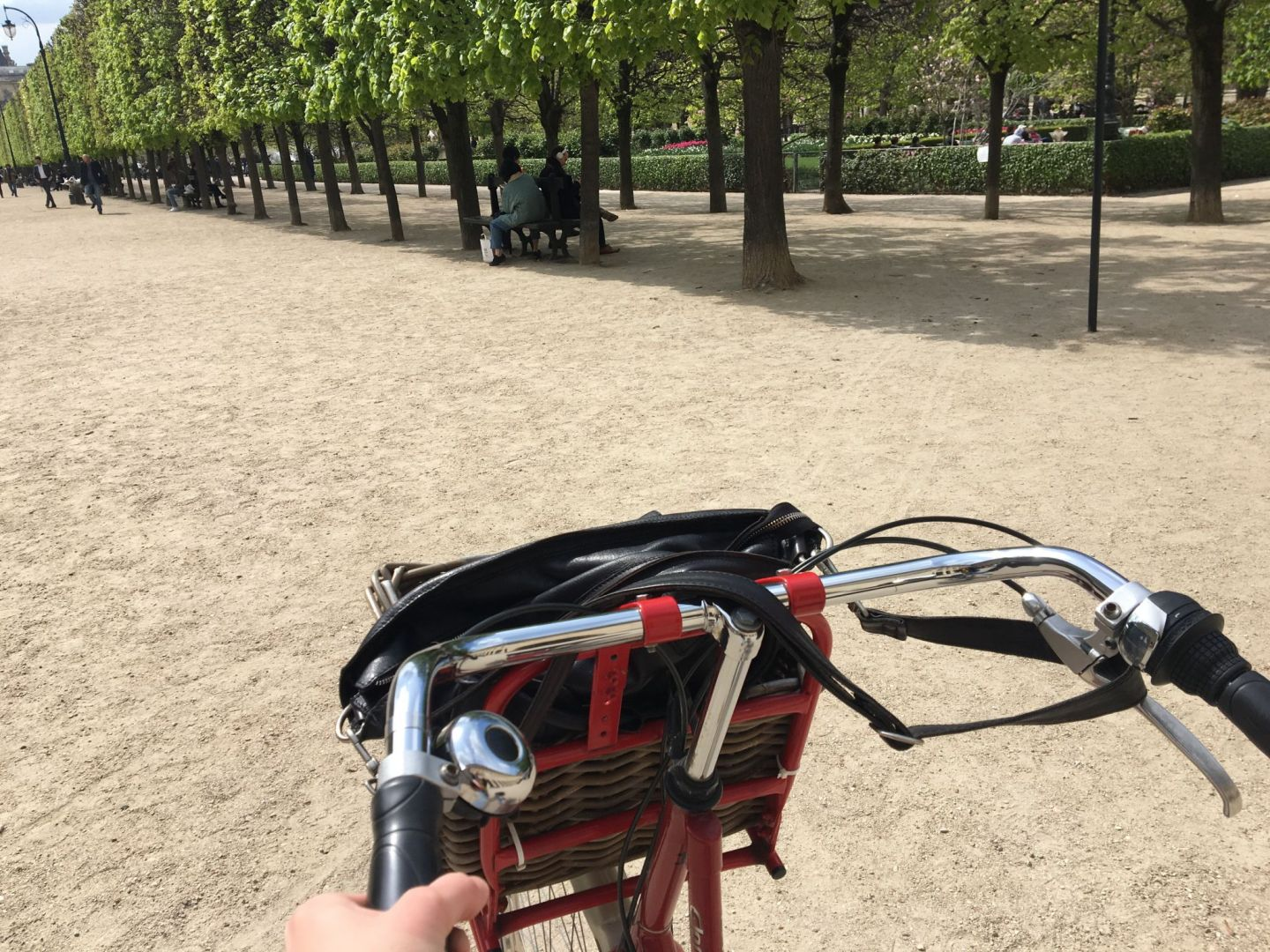 My week 15: First biking tour and a concert in Paris
