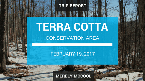 Trip Report: Hiking in Terra Cotta Conservation Area