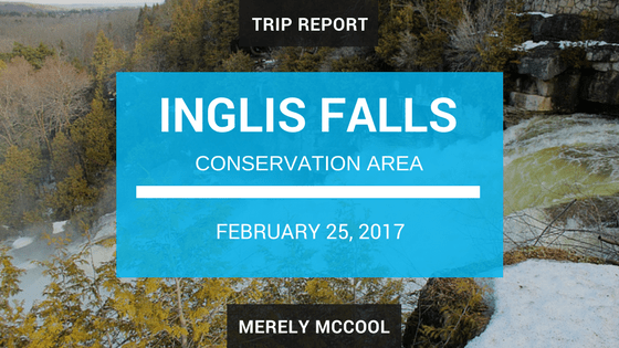 Trip Report: Hiking the Bruce Trail around Inglis Falls Conservation Area