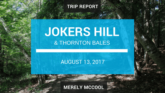 Jokers Hill & Thornton Bales