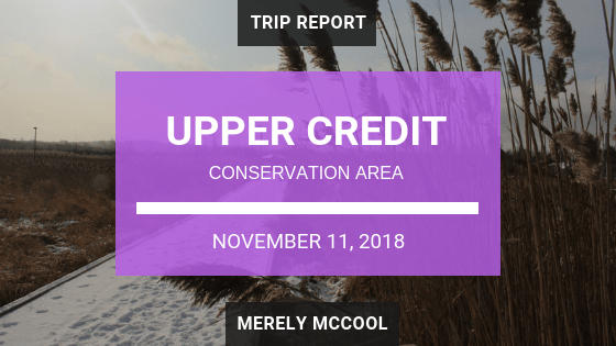 Upper Credit Conservation Area