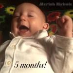 MacQuinn at 5 Months
