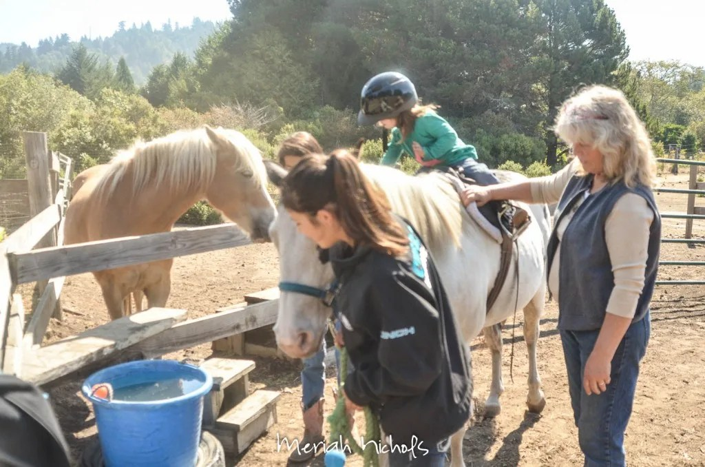 meriah nichols horse therapy september 2014 (14 of 28)