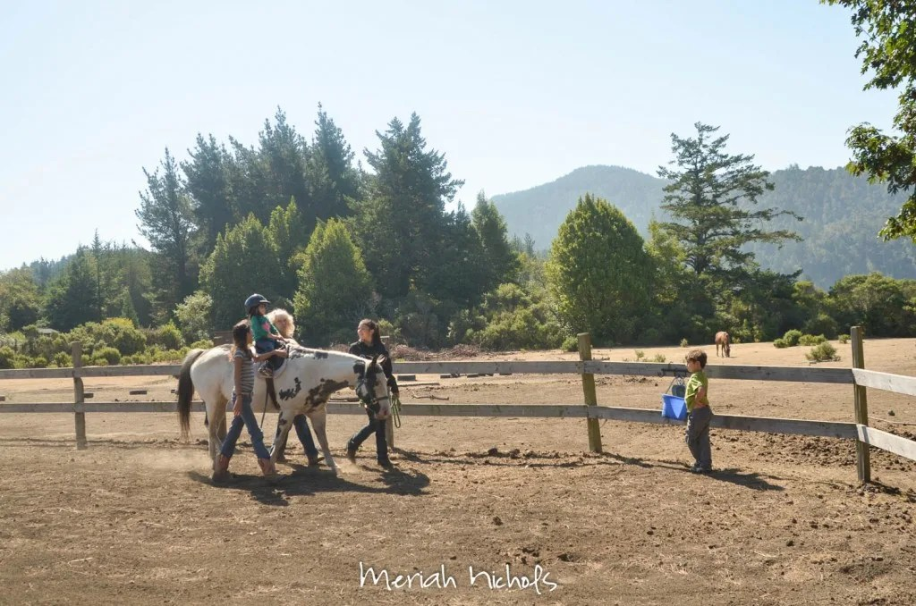 meriah nichols horse therapy september 2014 (19 of 28)