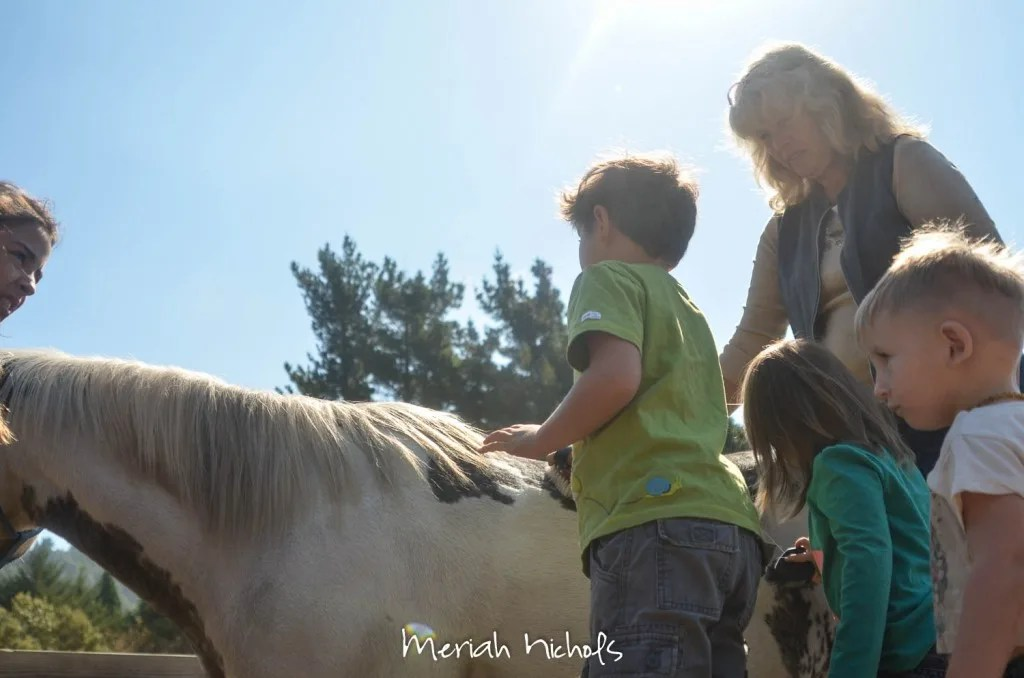 meriah nichols horse therapy september 2014 (28 of 28)