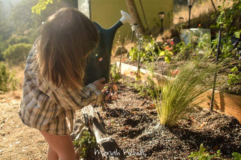 meriah nichols waldorf montessori homeschooling sept 14 (16 of 18)