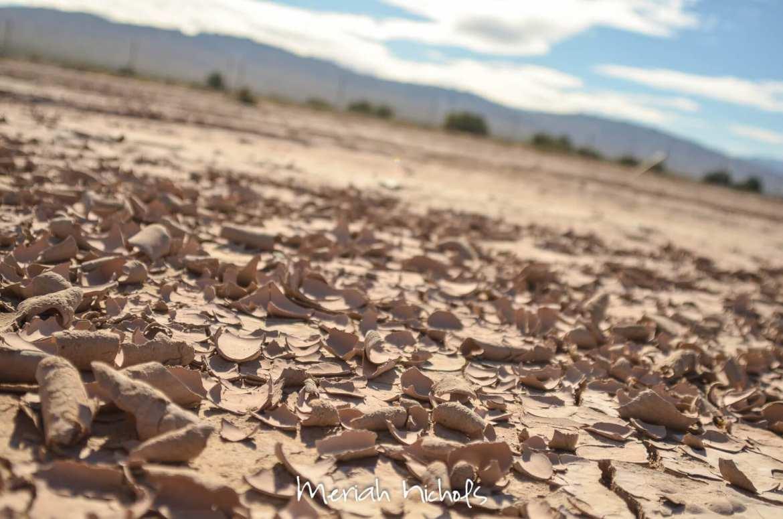 meriah nichols arizona-5