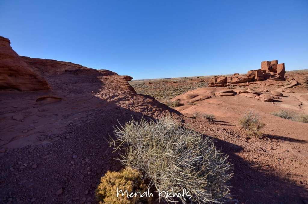 meriah nichols arizona-14