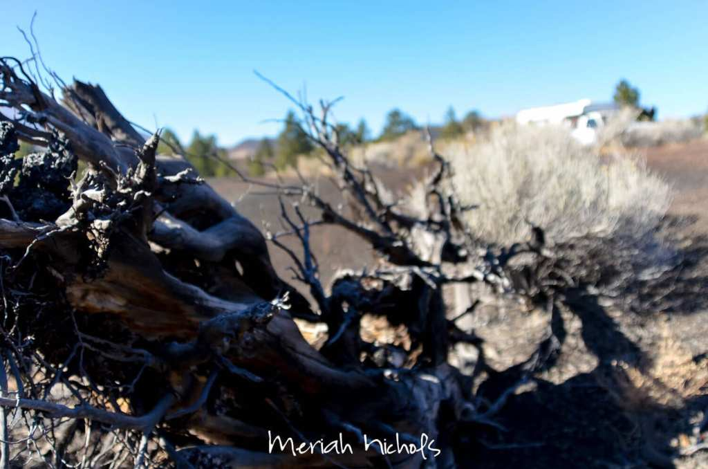 meriah nichols arizona-16