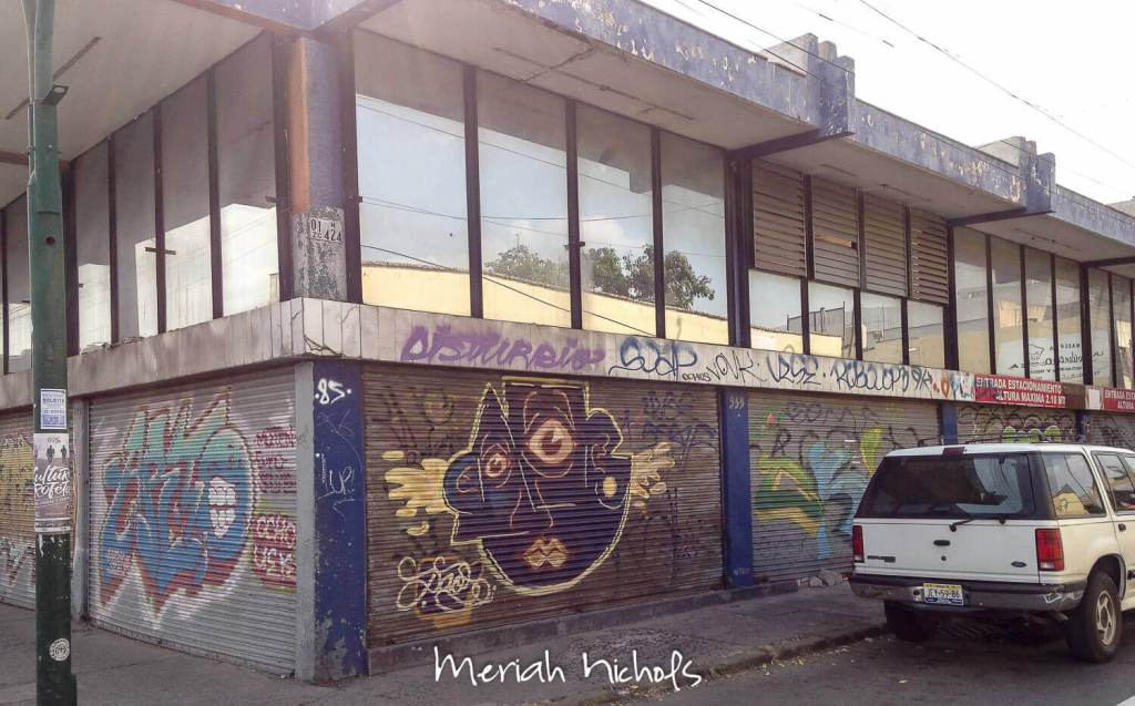meriah nichols guadalajara mexico-31