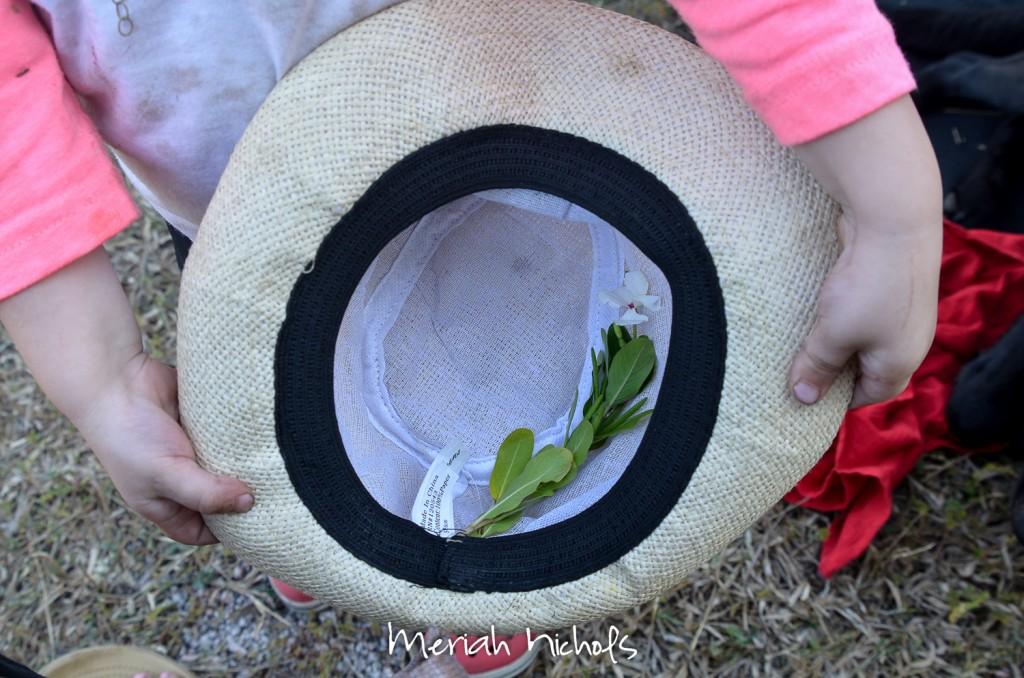 meriah nichols rv parks mexico-31