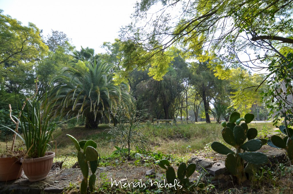 meriah nichols rv parks mexico