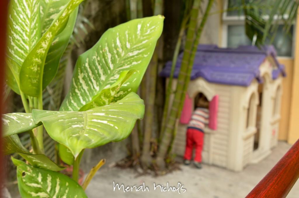 meriah nichols tepic mexico-25